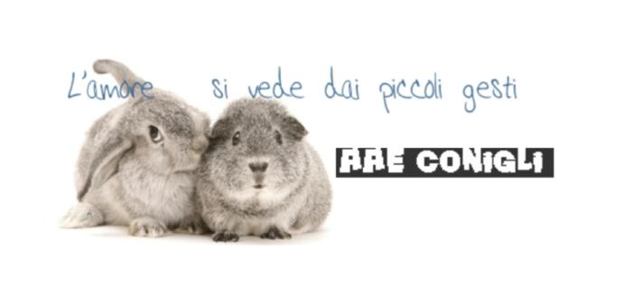 Associazione Animali Esotici Onlus, estrema attenzione per il benessere degli animali