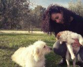 Tobia, il cane abbandonato in via Ricci, è stato adottato da Ginevra