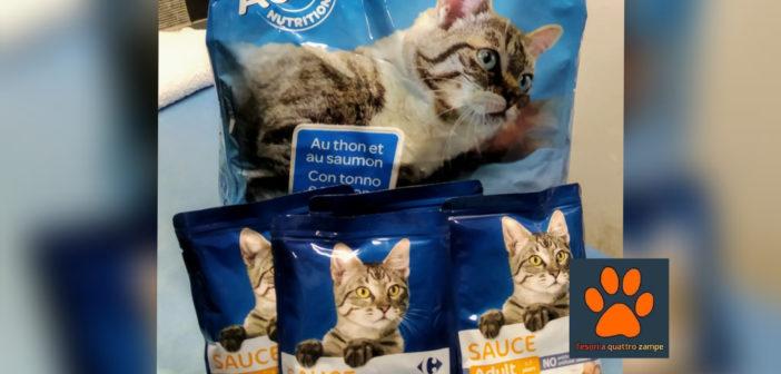 Volontario in difficoltà, ancora una donazione di crocchette per i suoi gatti randagi