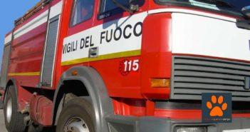 La Sardegna piange sotto i colpi delle fiamme. Morti animali e in fumo oltre 20mila ettari