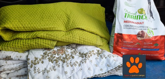 Tesori a quattro zampe consegna coperte e crocchette al Rifugio di Trilly